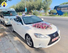 Xe cưới Lexus mui trần