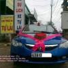Xe Cưới Honda Civic
